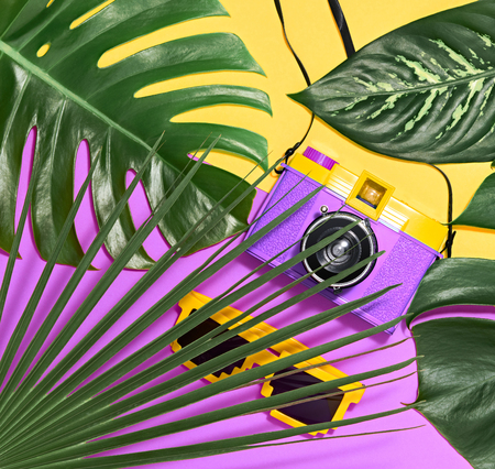 Tropical Palm Green Leaves Background. Colorful Hot Summer Vibes. Fashion concept. Trendy Sunglasses, fashion Hipster Accessories. Retro Design camera