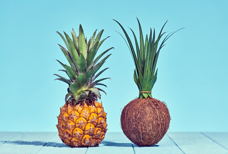 Pineapple and Coconut, Two Tropical Fruits. Bright Summer Color. Creative Minimal. Hot Summer Vibes. Sunny Beach background. Trendy fashion Style.
