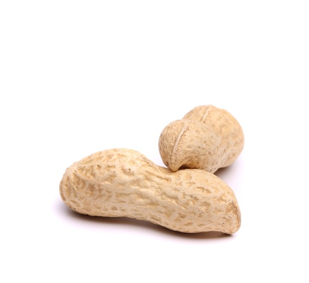 goober: Two pods of peanuts Stock Photo