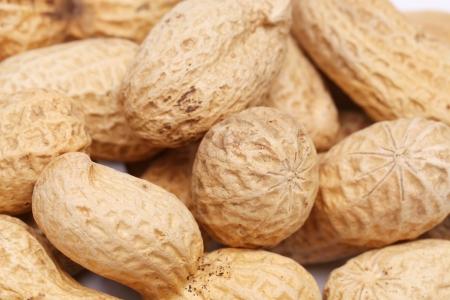 goober: Background of big peanuts Stock Photo