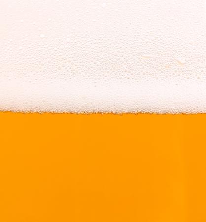 Light beer background  Half background froth  Half background beer  photo