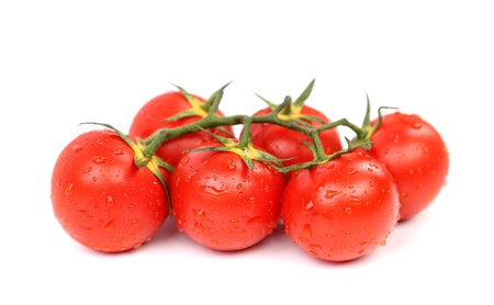 Cluster of Tomatoes are located on the white background photo