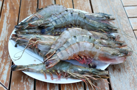 Fresh Shrimp on plate are located on old garden table photo