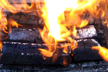 briquettes: Natural source of energy in the form of wooden briquettes on a white background.