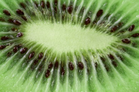 kiwi fruit as background. macro. close up. photo