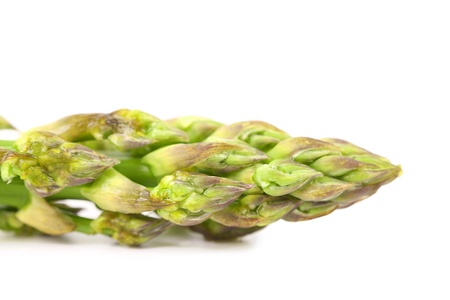 nutritiously: Close-up of top asparagus isolated on a white background