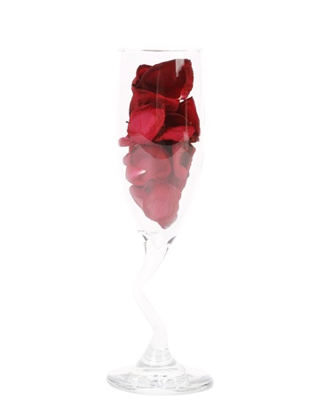roseleaf: Champagne glass with rose petals on white background