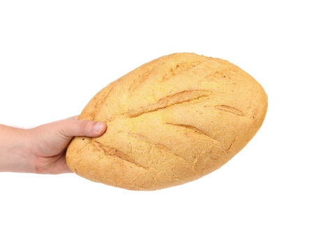 corn meal: Hand hold white bread of corn meal. White background.