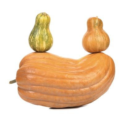 Composition of pumpkins. Isolated on a white background. photo