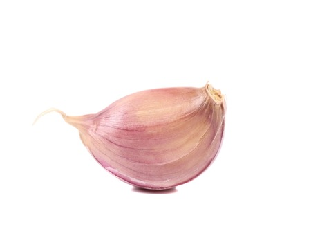 Garlic clove  isolated on a white background photo