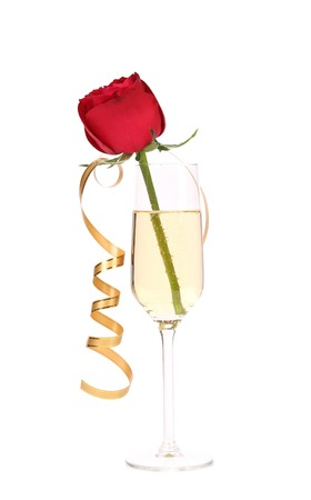 flutes: Red rose in glass of champagne and paper streamer. Isolated on white background.