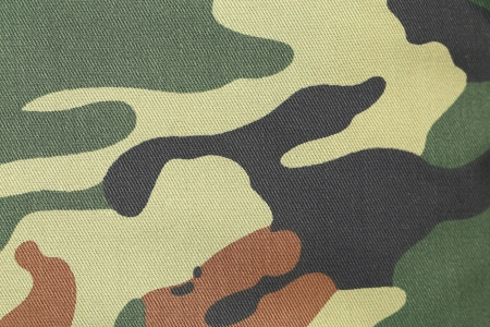warfare: Camouflage texture pattern with green tones. Isolated on white background. Stock Photo