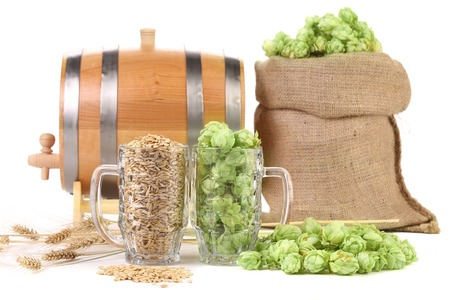 Two mugs with barley and hop. Isolated on a white background. photo