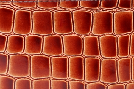 Red brown color of crocodile skin. Whole background. photo