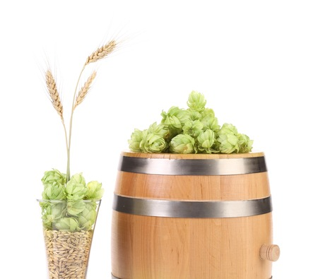 Barrel and mug with hop. Isolated on a white background. photo