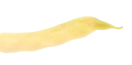 Close up of yellow bean pod. Isolated on a white background. photo