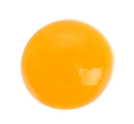 Egg yolk close up with egg white whole background photo