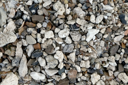 Small grey stones and pebble. Whole background photo