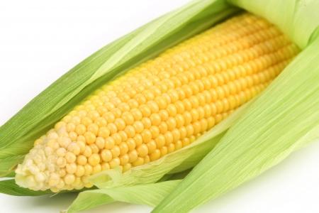 corncob: Background of corncob. Close up. Whole background. Stock Photo