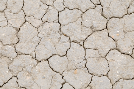 Background of dry cracked soil dirt or earth during drought Stock Photo - 23653442