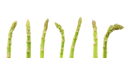 The top of some asparagus on a white background. photo