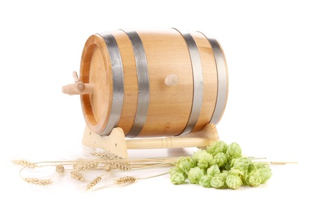 Green hop cones and wooden barrel. Isolated on white background photo