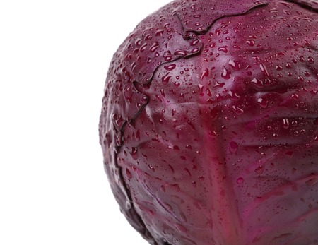 Background of fresh red cabbage. There is white space for text photo