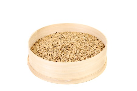 bolter: Wheat grain into sieve. Isolated on a white background.