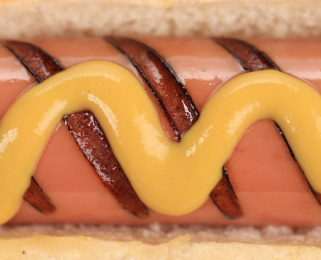 unhealthy living: Close up of hotdog with mustard  Whole