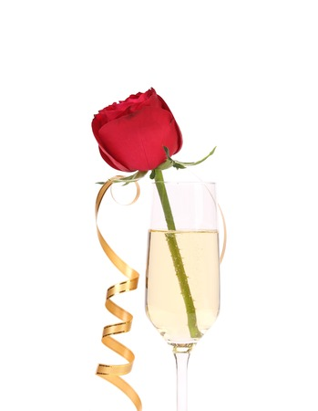 Red rose in glass of champagne and paper streamer. Isolated on white background. photo