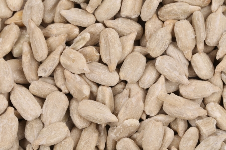 Background of sunflower seeds. Whole background. White seeds. photo