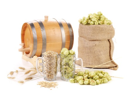 beer production: Two mugs with barley and hop. Isolated on a white background.