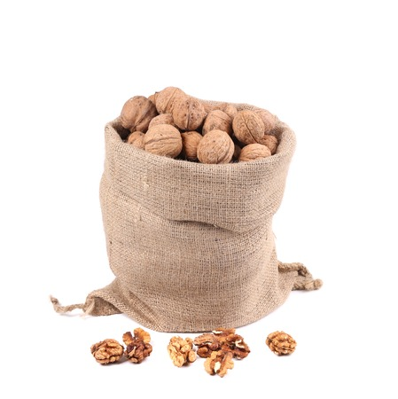Sack full of walnuts. Close up. Isolated on a white background. photo