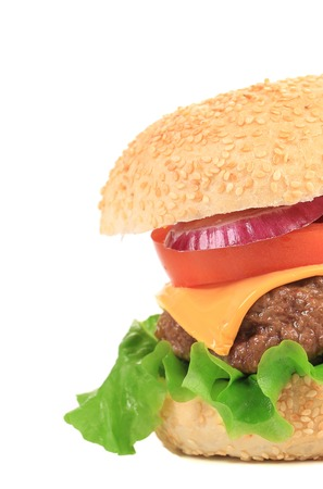 Close up of big tasty hamburger. Whole background. photo