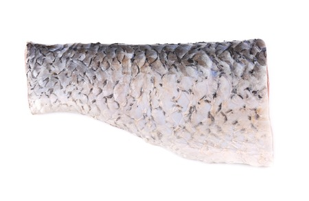 Fresh half of carp fillet. Isolated on a white . photo