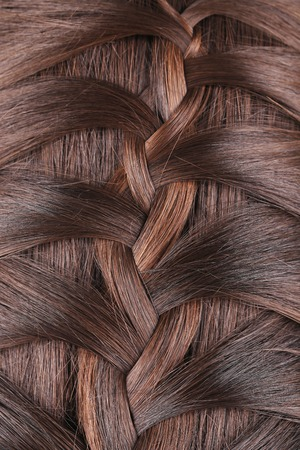Long Brown Hair Braid. Back View. Whole background. photo