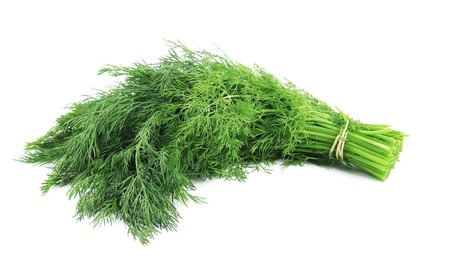 Bunch of fresh dill.  Isolated on white background photo