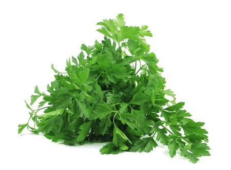 Bunch of parsley on a white background. Isolated photo