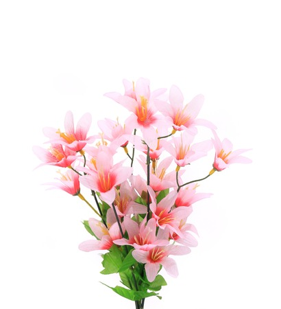 Close up of flower bouquet. Isolated on a white background. photo