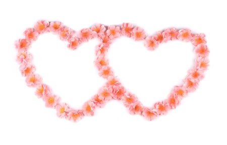 Pink flowers in form of heart. Isolated on a white background. photo