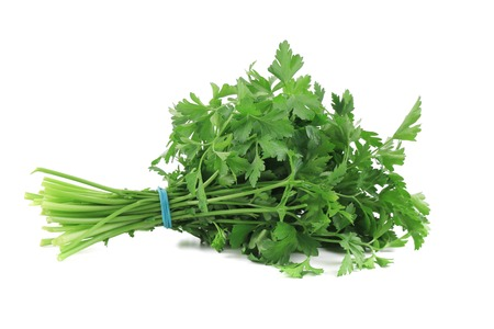 Bunch of parsley on a white. Isolated on a white background. photo