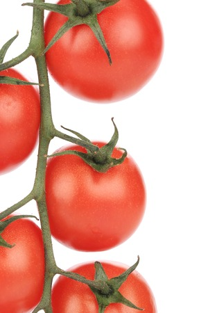 close up of Composition of tomatoes cherry.  photo