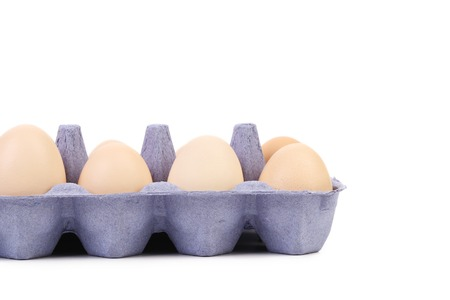 close up of eggs in a blue carton box. isolated on a white background photo