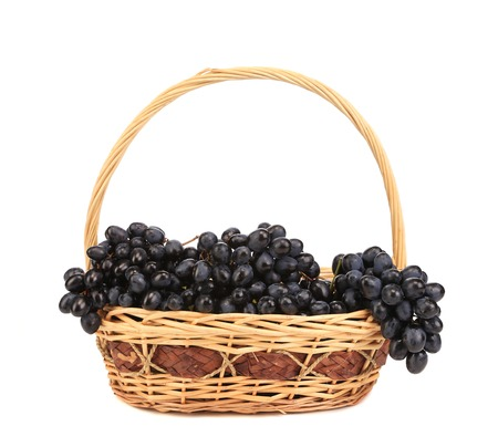 Black ripe grapes in basket. Isolated on a white background. photo