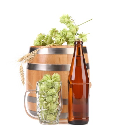 humulus: Barrel and bottle of beer with hop. Isolated on a white background. Stock Photo