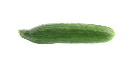 Fresh cucumber. Isolated on a white background. photo