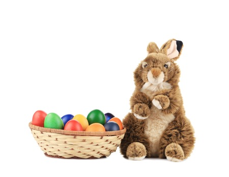Easter eggs and bunny. Isolated on a white background. photo