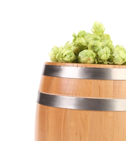 Hops and wooden barrel. Isolated on a white background. photo