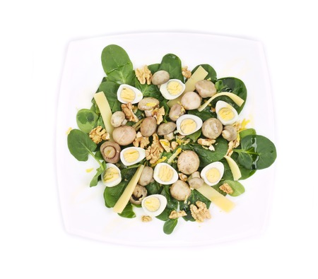 Mushroom salad with walnuts and parmesan. Isolated on a white background. photo