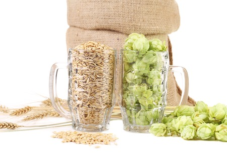 Two mugs with barley and hop. Whole background. photo